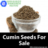 Efficient Element Group is The Best Option to Shop for Cumin Seeds