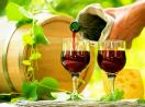 Best Wine Store in Havre De Grace, MD   Post Road Liquors